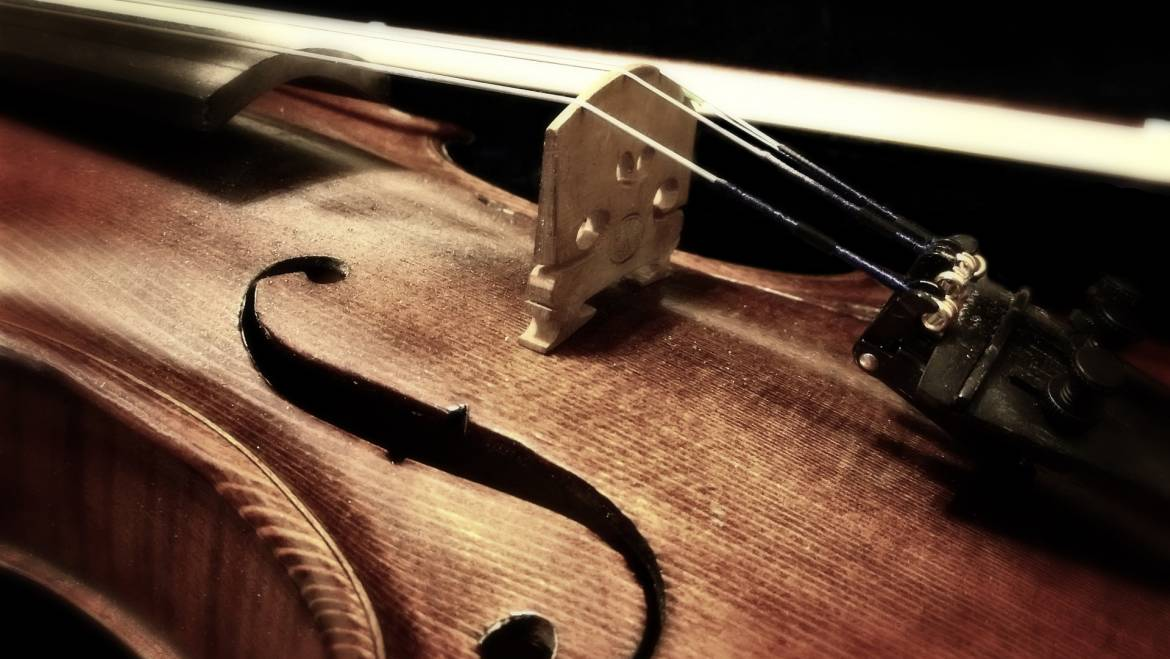 Take Care of Your Violin