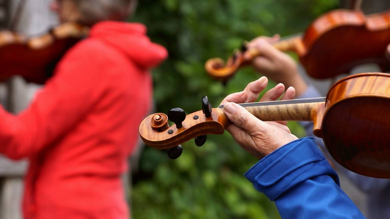 Suzuki Violin and Viola Teacher Training